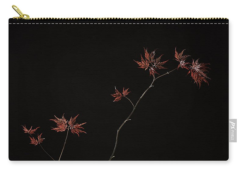 Japanese Carry-all Pouch featuring the photograph Lace Leaf Maple by Herman Robert