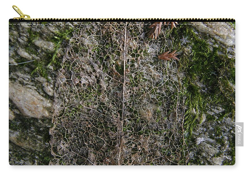 Leaf Carry-all Pouch featuring the photograph Lacey Leaf by Kimberly Mohlenhoff