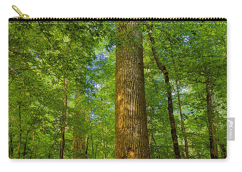 Forest Carry-all Pouch featuring the painting Lady And The Tree by David Lee Thompson
