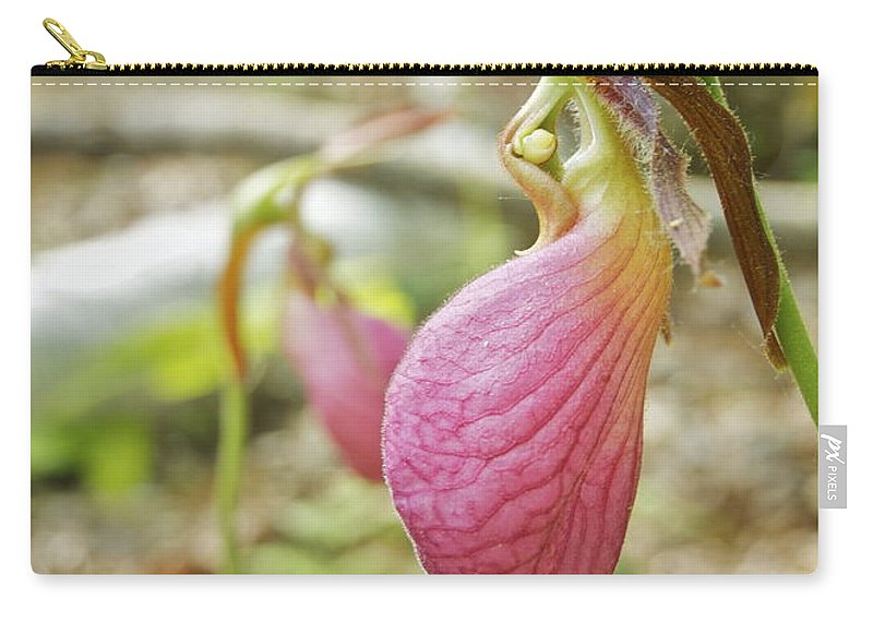 Wildflower Carry-all Pouch featuring the photograph Lady Slipper Profile by Michael Peychich