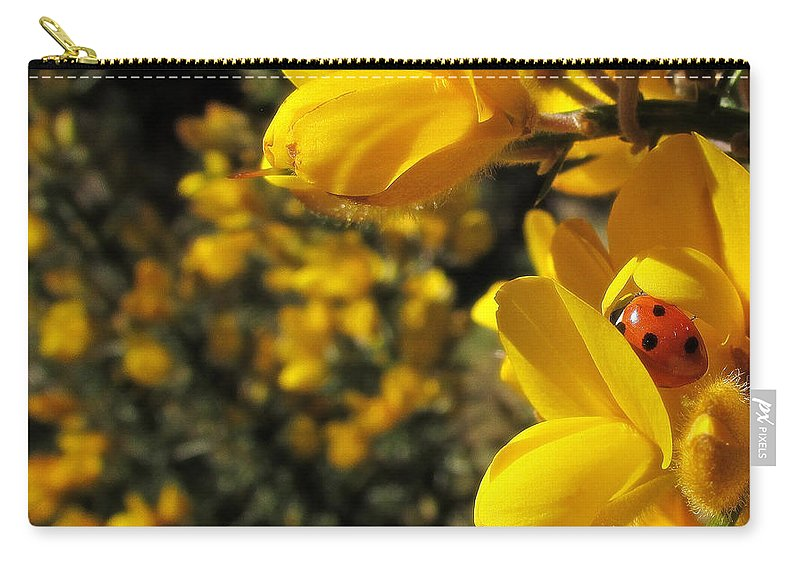 Ladybird Carry-all Pouch featuring the photograph Ladybird by Hanni Jakob