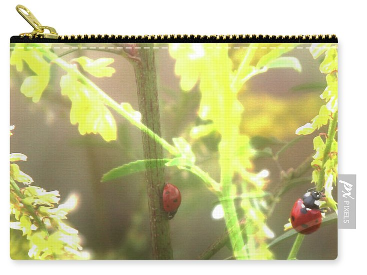 Ladybug Carry-all Pouch featuring the photograph Ladybug Ladybug by Toni Hopper