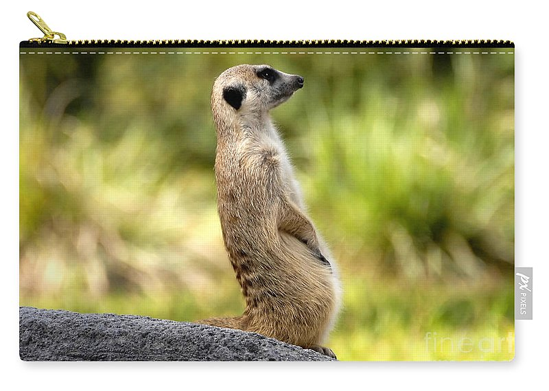 Laid Back Carry-all Pouch featuring the photograph Laid Back by David Lee Thompson