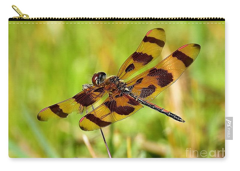 Dragonfly Carry-all Pouch featuring the photograph Landing Spot by Lisa Renee Ludlum