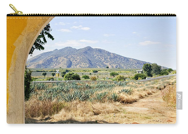 Agave Carry-all Pouch featuring the photograph Landscape With Agave Cactus Field In Mexico by Elena Elisseeva