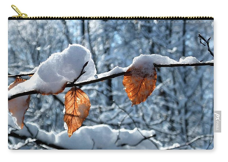 Color Carry-all Pouch featuring the photograph Last Leaves by Karen Stahlros