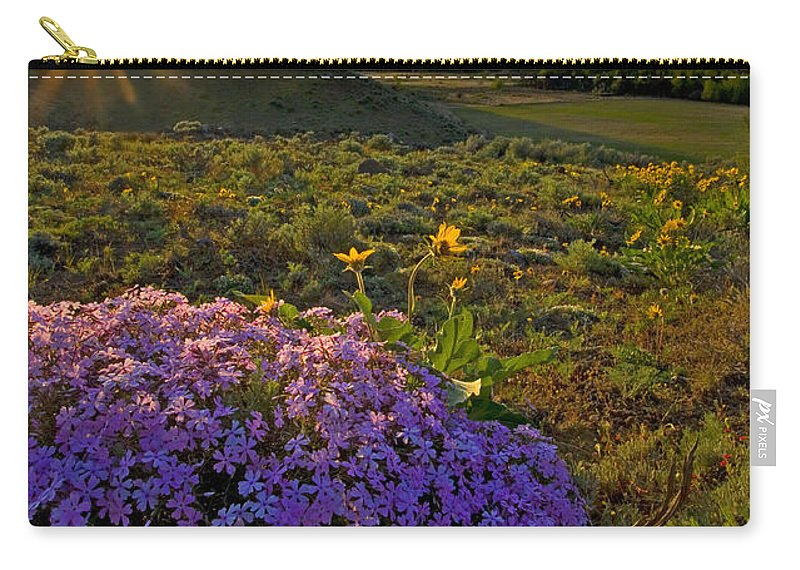 Wildflowers Carry-all Pouch featuring the photograph Last Light Of Spring by Mike Dawson