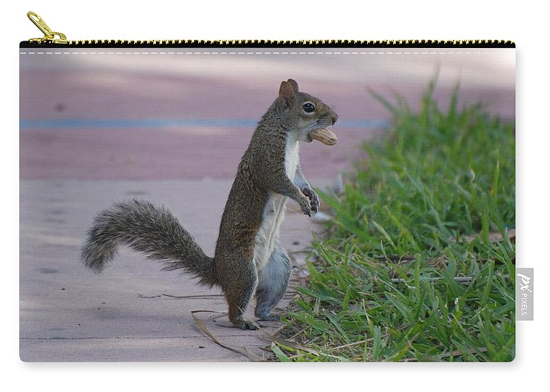 Squirrels Carry-all Pouch featuring the photograph Last Squirrel Standing by Rob Hans