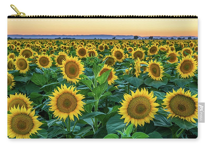California Carry-all Pouch featuring the photograph Late Bloomer by Greg Mitchell Photography