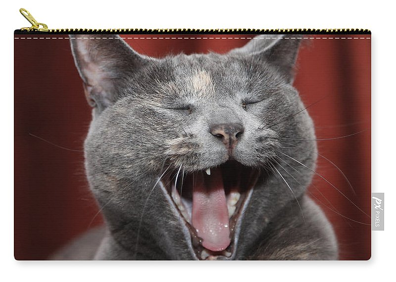 Kitty Carry-all Pouch featuring the photograph Laughing Kitty by Amanda Barcon