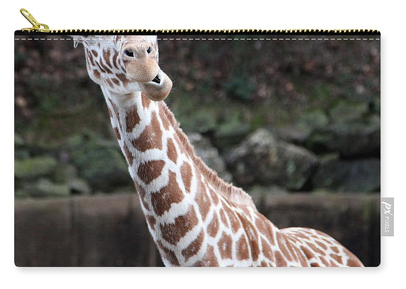 Laughing Giraffe Carry-all Pouch featuring the photograph Laughter by Amanda Barcon