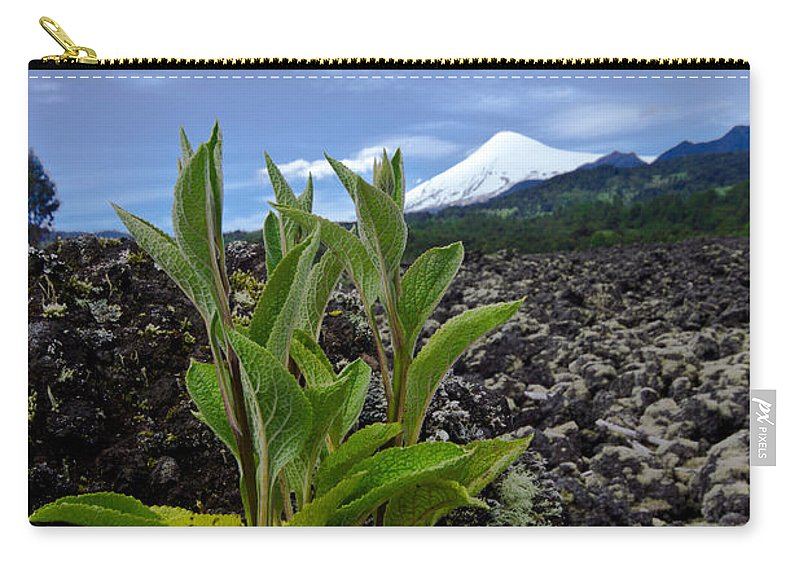 Volcano Carry-all Pouch featuring the photograph Lava And Villa Rica Volcano by Dant� Fenolio