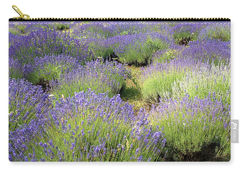 Lavender Carry-all Pouch featuring the photograph Lavender Field, Tihany, Hungary by Attila Jandi