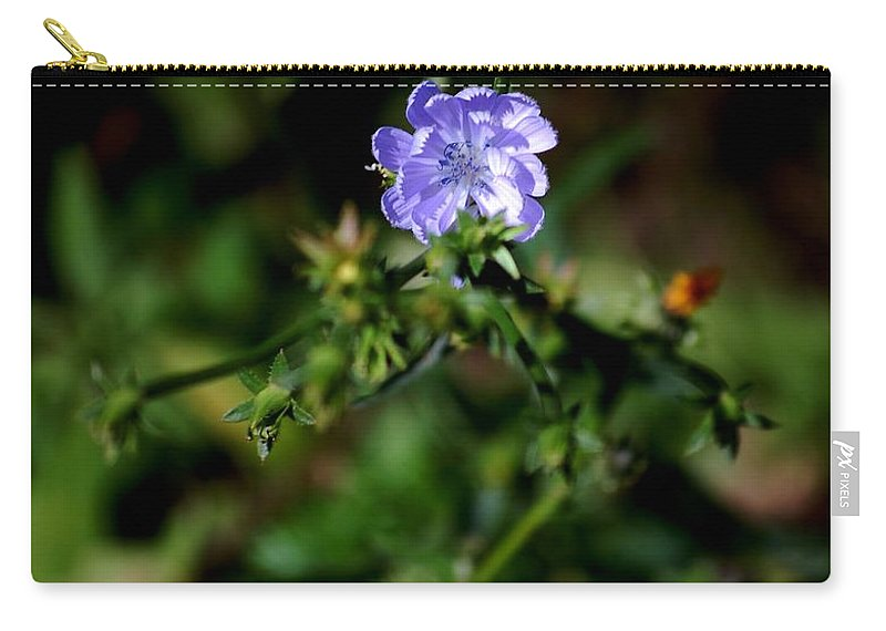 Digital Photograph Carry-all Pouch featuring the photograph Lavender Hue by David Lane
