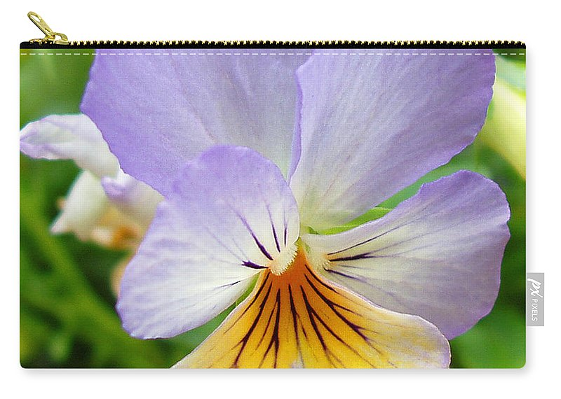 Pansy Carry-all Pouch featuring the photograph Lavender Pansy by Nancy Mueller