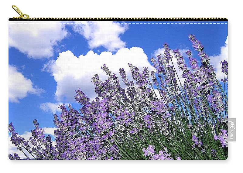 Lavender Carry-all Pouch featuring the photograph Lavender by Will Borden