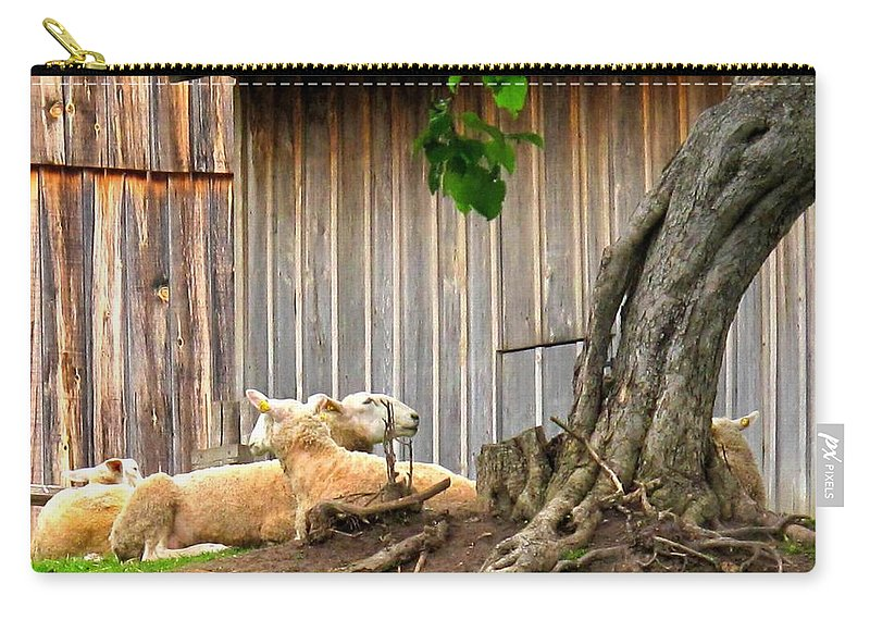 Sheep Carry-all Pouch featuring the photograph Lawnmowers At Rest by Ian MacDonald
