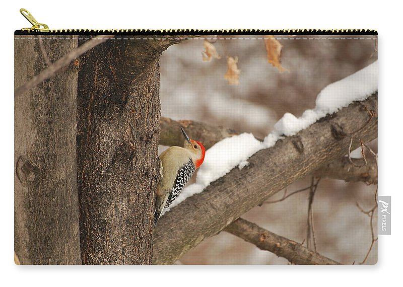Woodpecker Carry-all Pouch featuring the photograph Laying Down On The Job by Lori Tambakis