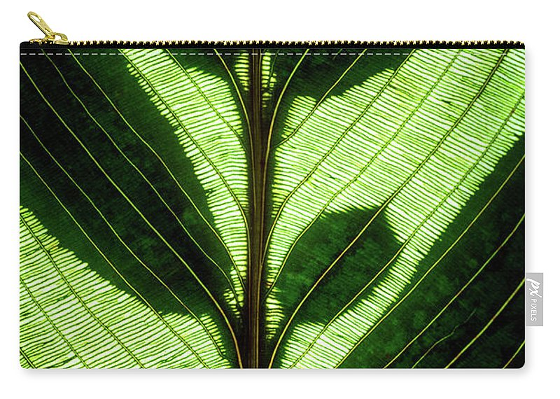 Macro Carry-all Pouch featuring the photograph Leaf Detail by Christopher Johnson