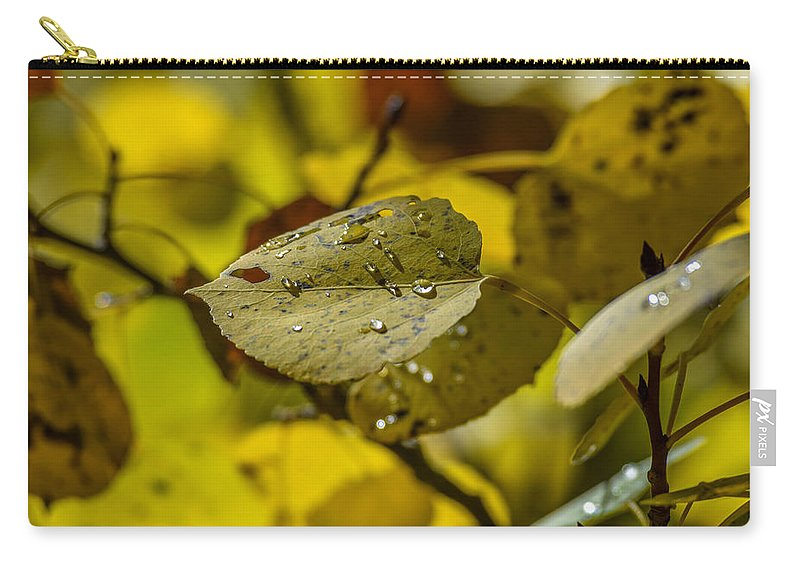 Leaf Carry-all Pouch featuring the photograph Leaf Dew by Michael Putthoff