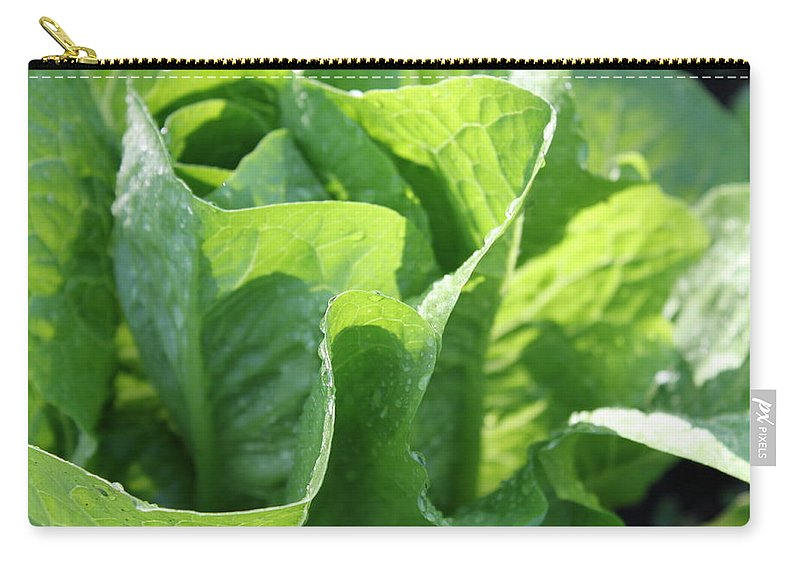 Leaf Carry-all Pouch featuring the photograph Leaf Lettuce by Lauri Novak