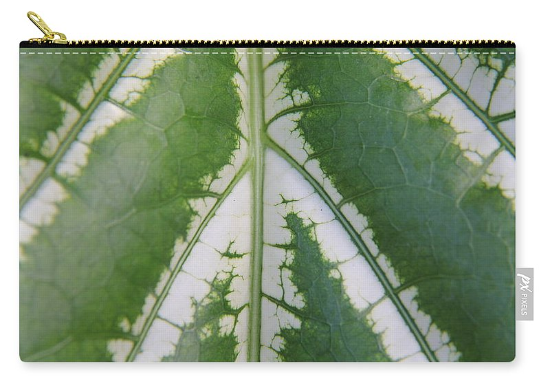 Tropical Leaf Carry-all Pouch featuring the photograph Leaf Variegated 2 by Jennifer Bright