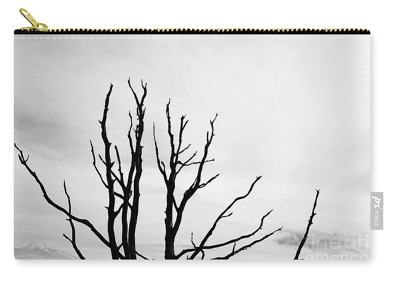 Dead Carry-all Pouch featuring the photograph Leafless Tree by Jan Brons