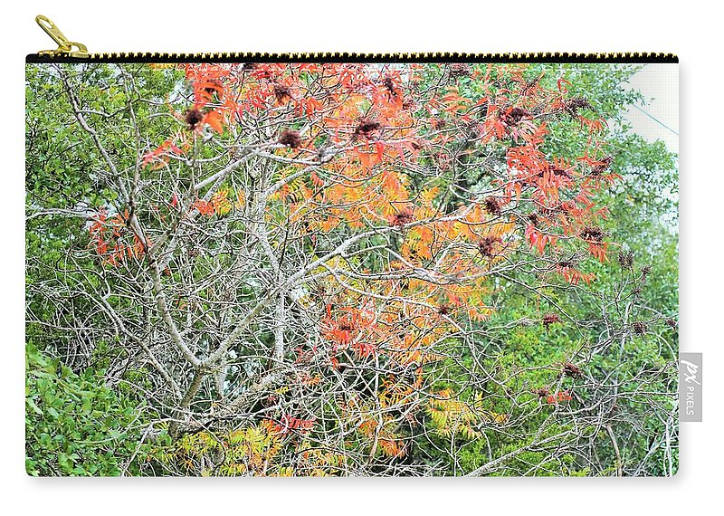 Carry-all Pouch featuring the photograph Leafs 003 by Jeff Downs