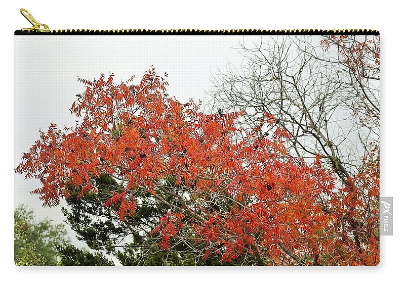 Carry-all Pouch featuring the photograph Leafs 005 by Jeff Downs