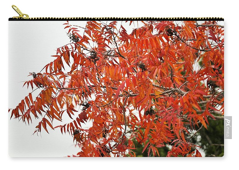 Carry-all Pouch featuring the photograph Leafs006 by Jeff Downs