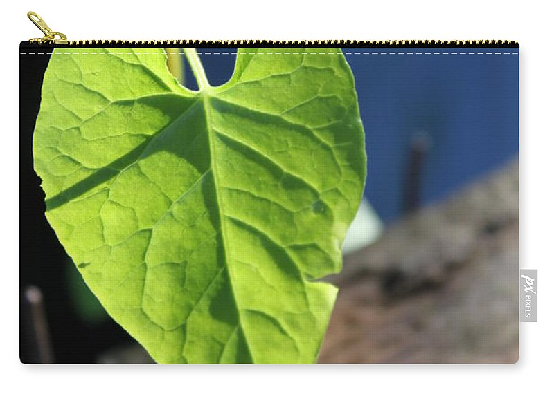 Leaf Carry-all Pouch featuring the photograph Leafy Veins by Lauri Novak