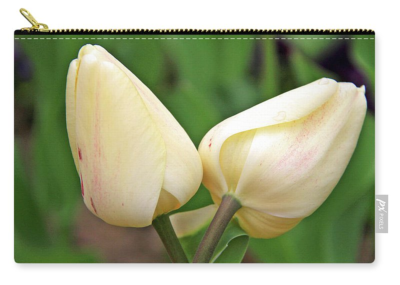 Flowers Carry-all Pouch featuring the photograph Lean On Me by Scott Mahon