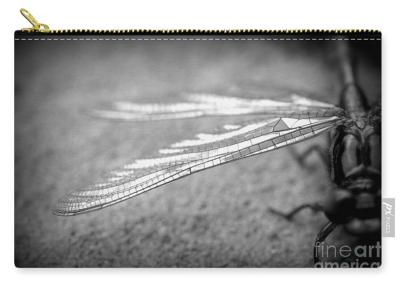 Dragonfly Carry-all Pouch featuring the photograph Learn To Fly by Julie Street