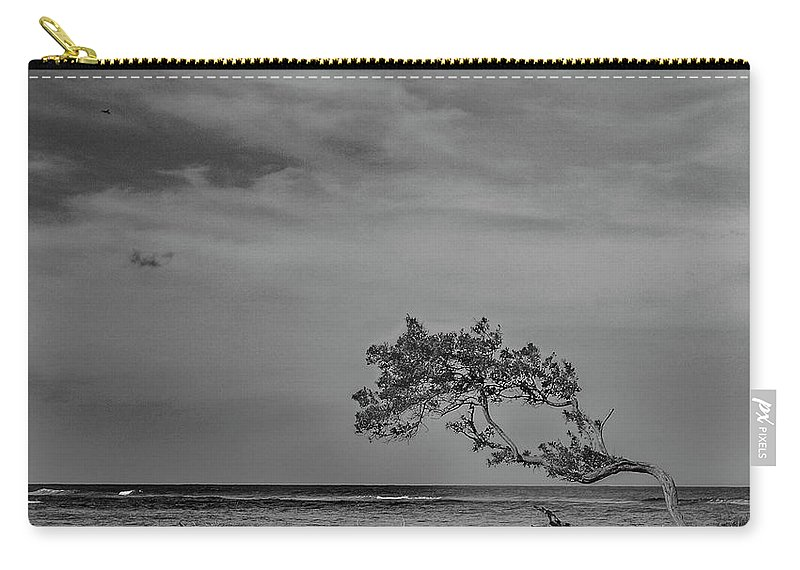 Black And White Carry-all Pouch featuring the photograph Learning To Fly by Wendy Franco Carballo