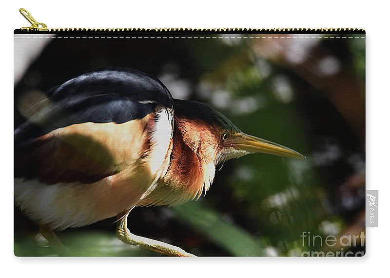 Elusive Carry-all Pouch featuring the photograph Least Bittern On The Hunt by Sheila Lee