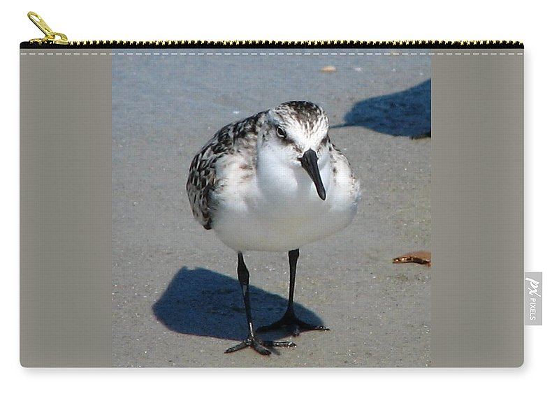 Least Sandpiper Carry-all Pouch featuring the photograph Least Sandpiper by J M Farris Photography