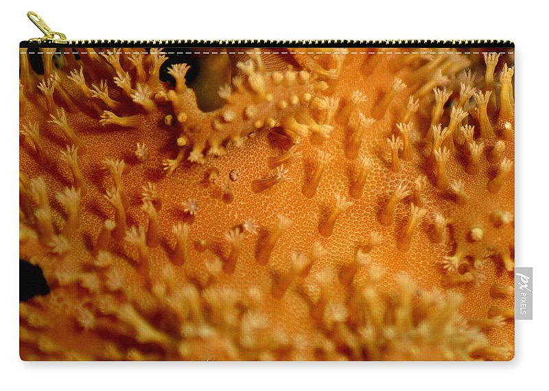 Underwater Carry-all Pouch featuring the photograph Leather Coral by Anthony Jones