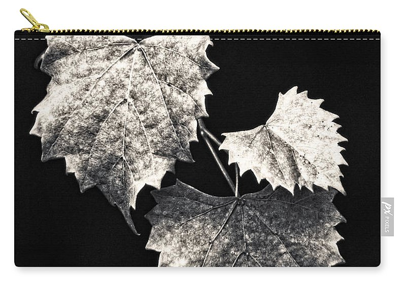 B&w Carry-all Pouch featuring the photograph Leaves by Christopher Holmes