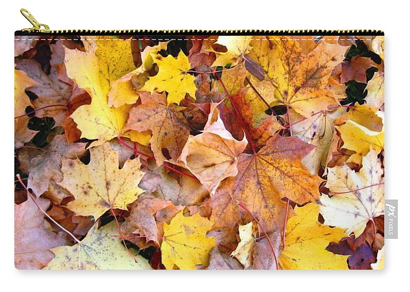 Leaves Carry-all Pouch featuring the photograph Leaves of Fall by Rhonda Barrett
