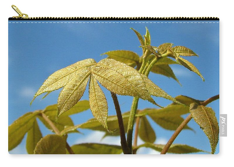 Nature Carry-all Pouch featuring the photograph Leaves Of Gold by Peg Urban