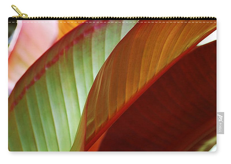 Leaves Carry-all Pouch featuring the photograph Leaves by Robert Meanor