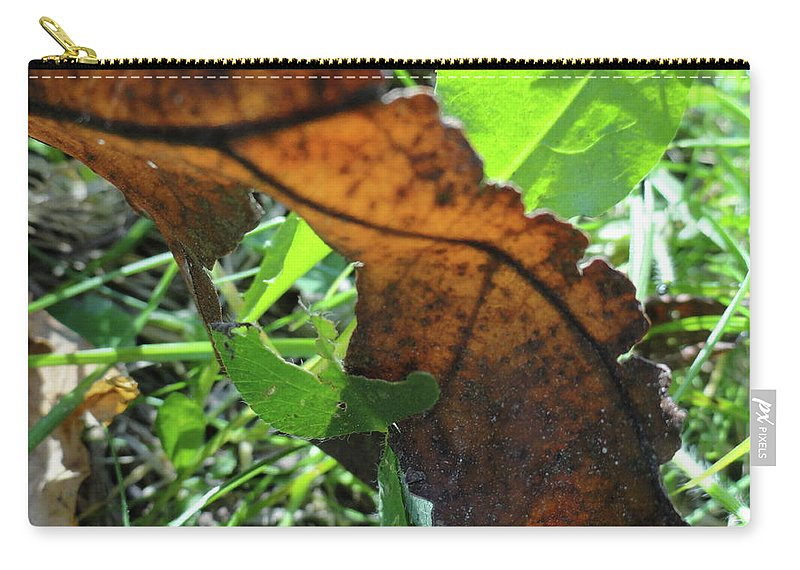 Leaves Carry-all Pouch featuring the photograph Leaves Still by Trish Hale