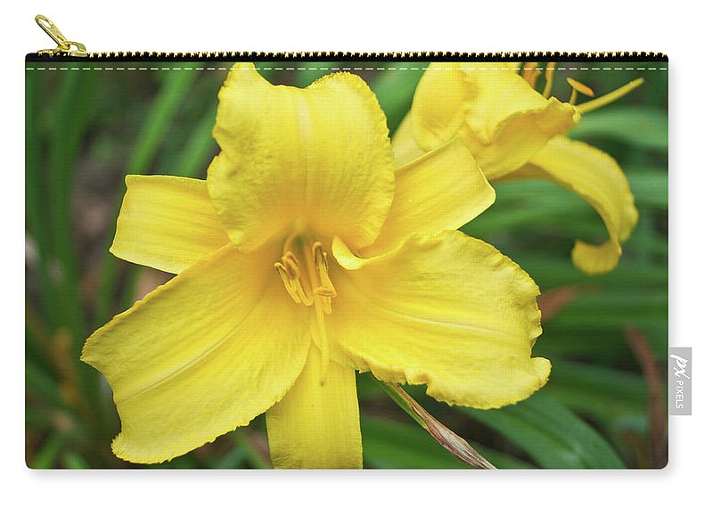 Lemon Carry-all Pouch featuring the photograph Lemon Lily by Douglas Barnett