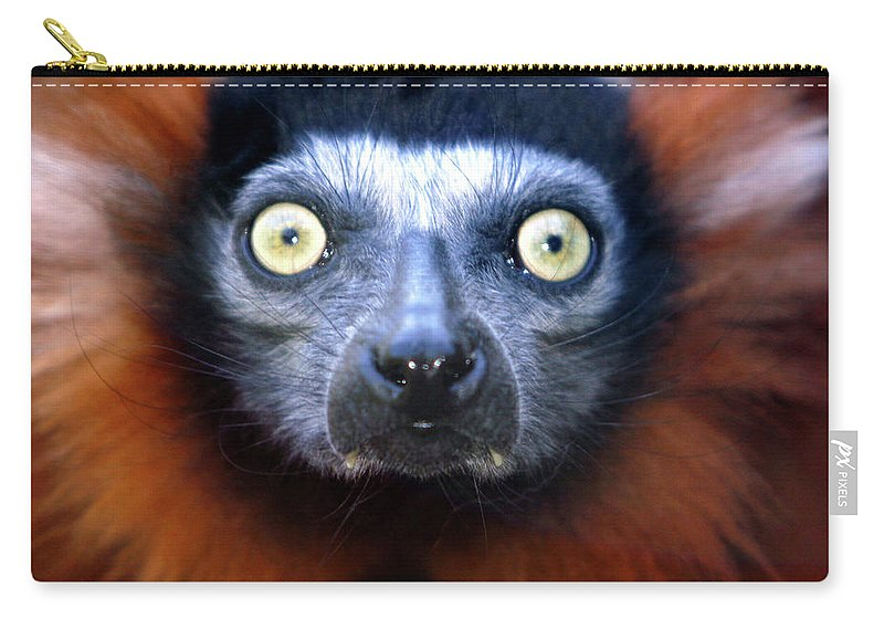 Animal Carry-all Pouch featuring the photograph Lemur Glare by Alan Look