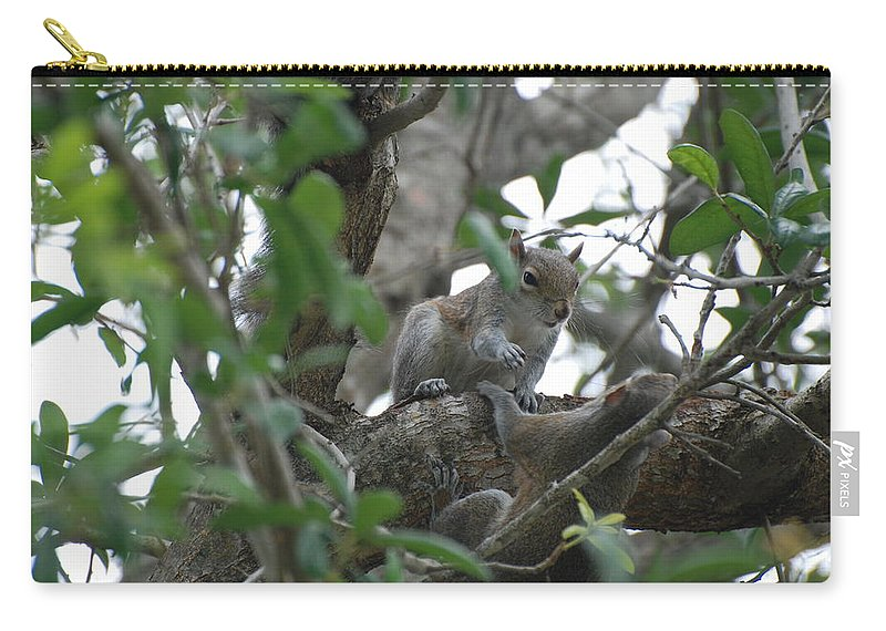 Squirrel Carry-all Pouch featuring the photograph Lending A Helping Hand by Rob Hans