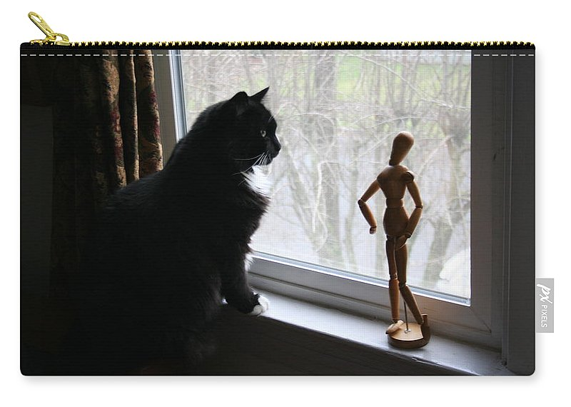 Cat Carry-all Pouch featuring the photograph Lesson In Perspective by Quin Sweetman