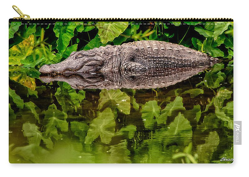 Alligator Carry-all Pouch featuring the photograph Let Sleeping Gators Lie by Christopher Holmes