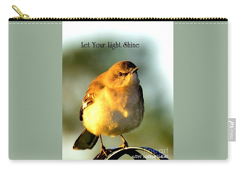 Let Your Light Shine Carry-all Pouch featuring the photograph Let Your Light Shine by Lisa Renee Ludlum