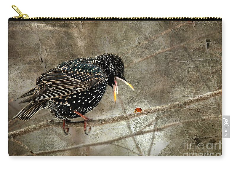 Bird Carry-all Pouch featuring the photograph Let's Do Lunch by Lois Bryan
