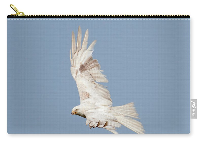 Red Carry-all Pouch featuring the photograph Leucistic Red Kite by Peter Walkden